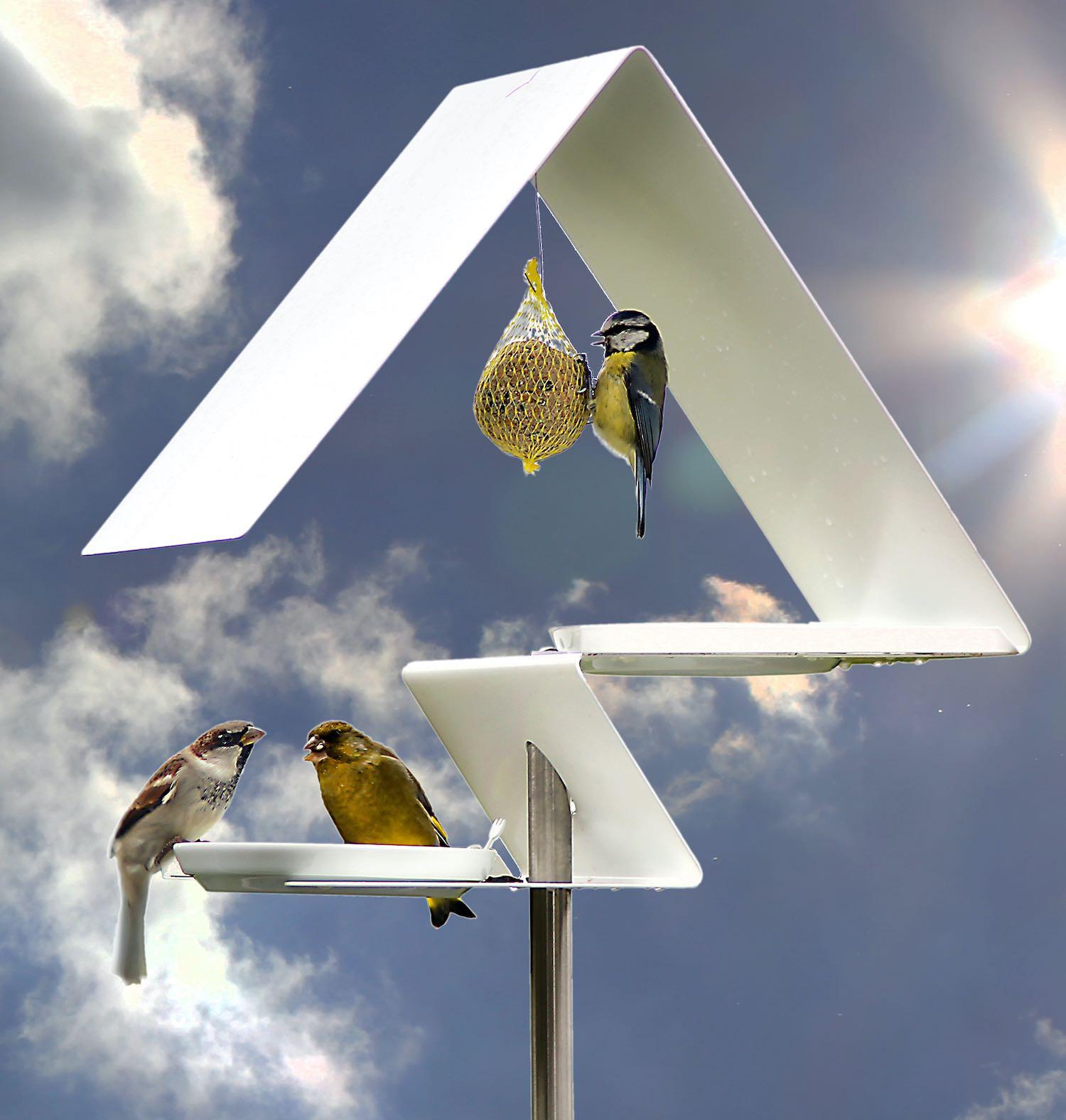 VogelHÄUSER- im wahrsten Sinne des Wortes